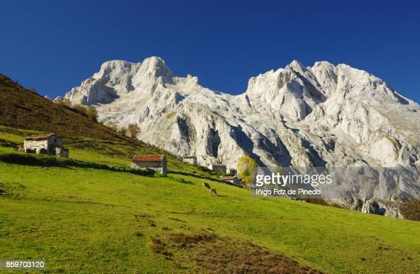 picos de europa - naranjo de bulnes -  pandébano - naranjo de bulnes - asturias- spain - parque nacional fotografías e imágenes de stock