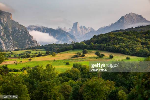 picos de europa sunset view. asturias, spain - principado de asturias fotografías e imágenes de stock