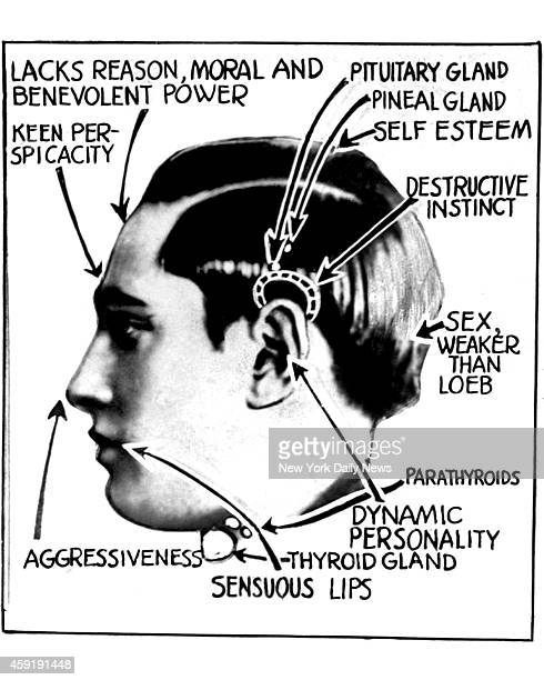 Picture illustrates a phrenologist's study of Nathan Leopold Jr He and Richard Loeb kidnaped and killed Robert Franks of Chicago