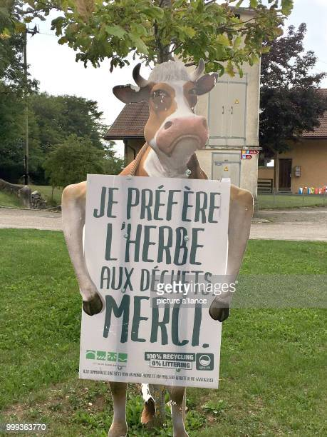 Picture of a cardboard holder in the shape of a cow holding a sign with the text 'I'd rather eat something green instead of trash' taken near...