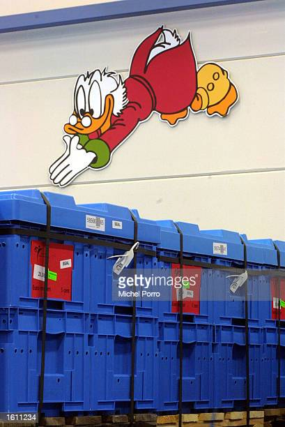 A picture of a Disney duck seems to dive into containers of Euro coins August 28 2001 in the Netherlands Bank depot in Lelystad Holland The first of...