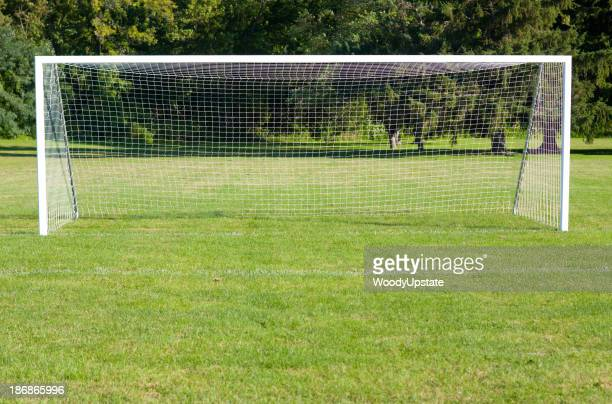 Picture of a soccer goal on a green soccer field