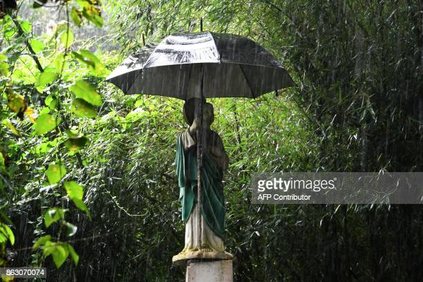 Picture of a statue of Jesus Christ with an umbrella seen near a coffee plantation in the Uyuca Biological Reserve just east of Tegucigalpa in...