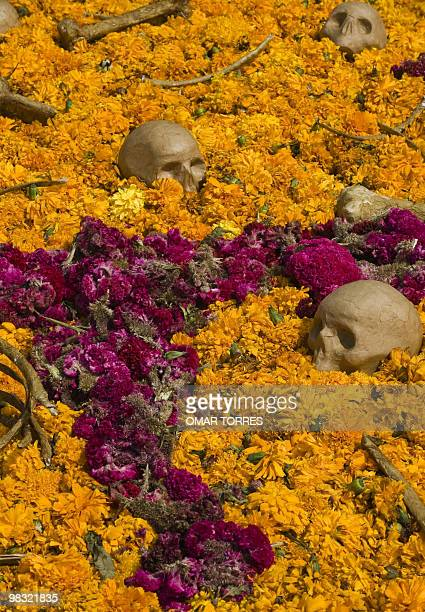 Picture of an Altar of the Dead made with skulls and a carpet of cempasuchil flowers taken at the National Autonomous University of Mexico in Mexico...