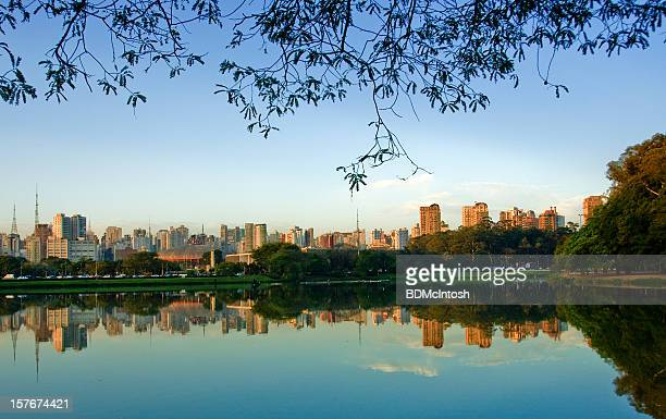 picture of sao paulo, brazil, skyline taken from a lake - ibirapuera park stock pictures, royalty-free photos & images