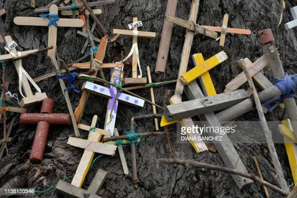 TOPSHOT Picture of small crosses placed by parishioners on a tree during a Good Friday procession in Ciudad Bolivar neighbourhood in Bogota on April...