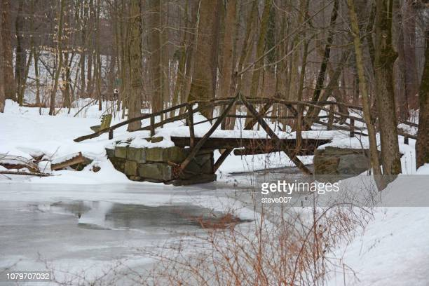 picture of snow and ice taken after a snowstorm in scarsdale new york in scarsdale, new york. photo taken sunday march 1, 2015. - scarsdale stock photos and pictures