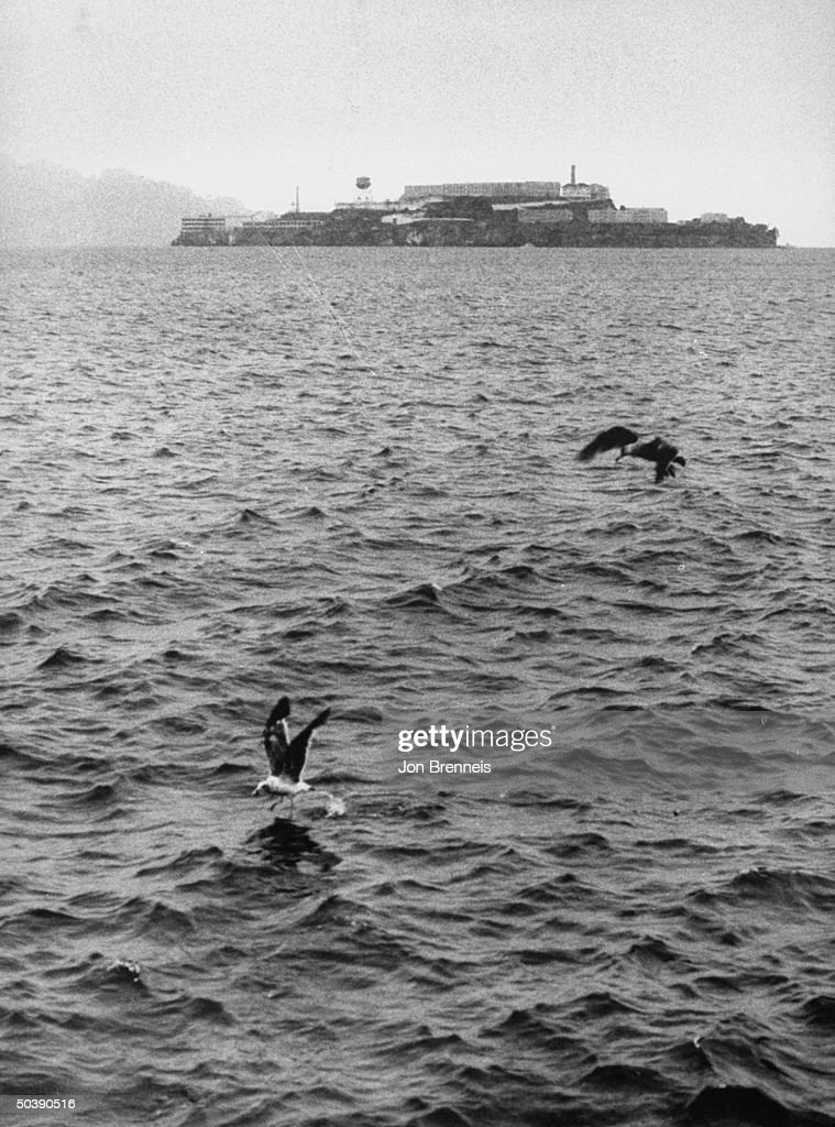 Picture of the Alcatraz prison, where se : News Photo