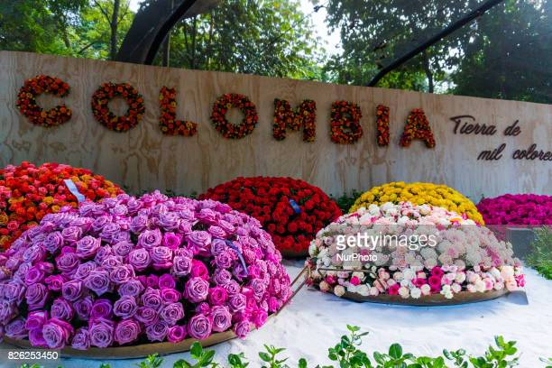 Picture of the 'Fair of Flowers' at the Jardin Botanico Medellin Joaquín Antonio Uribe in Medellin Colombia South America on 2 August 2017