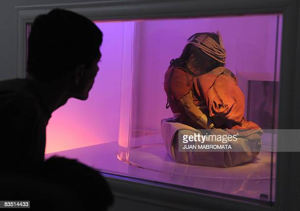 Picture of the mummy El Niño a sevenyear old Inca child found along two other frozen mummies on March 15 1999 at an altitude of 6730 metres on the...