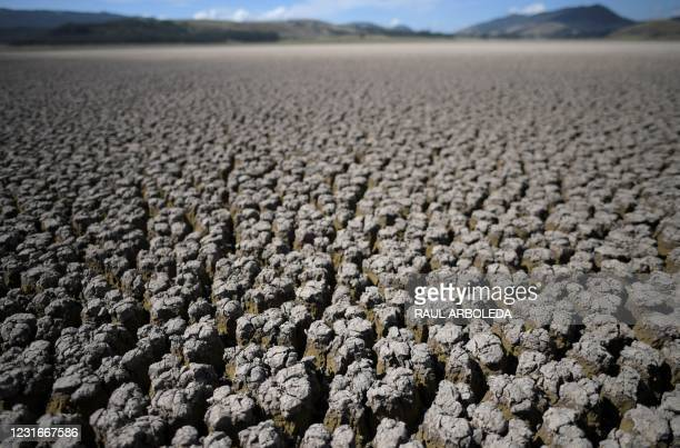Picture of the Suesca lagoon which has dried up due to a strong drought produced by climate change since 2012, according to environmental...