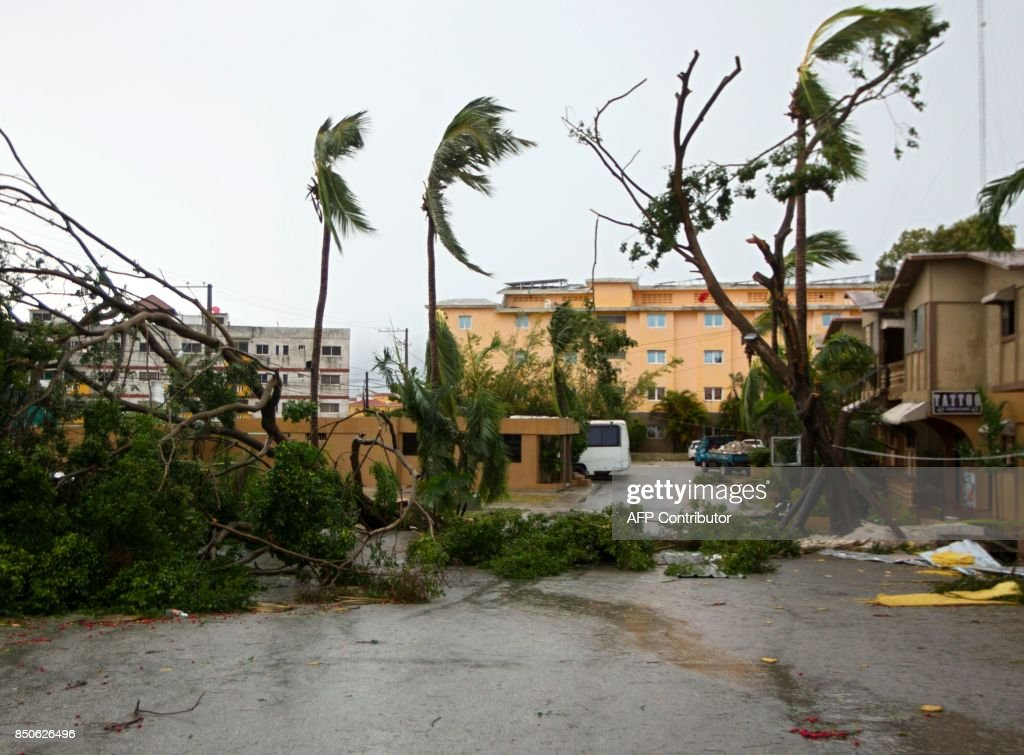TOPSHOT - Picture of trees knocked down by strongs winds of Hurricane Maria in Punta Cana, in the eastermost tip of the Dominican Republic as the hurricane passes just north of the La Espanola island the country shares with Haiti, on September 21, 2017. After cutting a devastating path across Puerto Rico, the now Category Three storm, packing 115 mile (185 kilometre) per hour winds, is passing north of the Dominican Republic as it moves toward the Turks and Caicos Islands, according to the US National Hurricane Centre. / AFP PHOTO / Erika SANTELICES