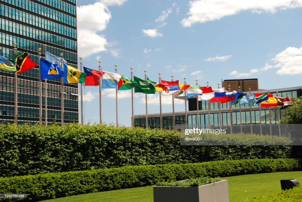 Picture Of United Nations Flags.  Photo taken Friday May 23, 2008. : ストックフォト