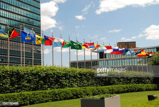 picture of united nations flags.  photo taken friday may 23, 2008. - united nations building stock pictures, royalty-free photos & images