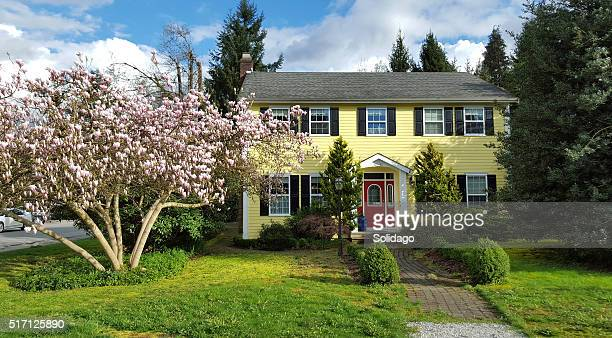 picture perfect yellow house in springtime - colonial style stock pictures, royalty-free photos & images