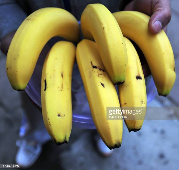 A picture shows bananas on sale at a market in London on February 23 2014 According to the British Fairtrade organization the UK consumes over five...