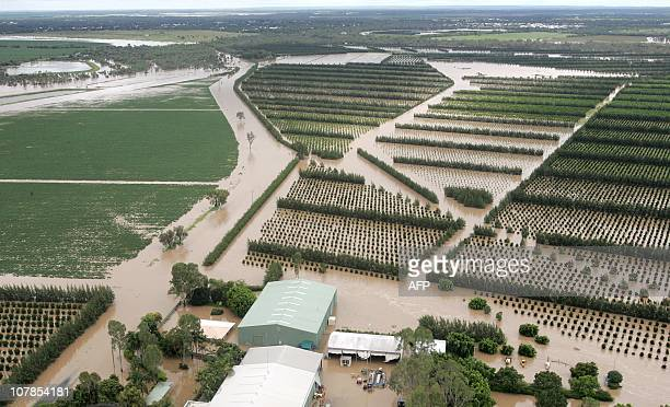 A picture shows flooded fields and orchards on the outskirts of the Queensland town of Emerald on December 30 2010 Hundreds of people fled worsening...