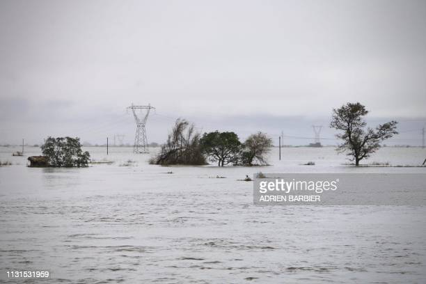 Picture shows plants utility poles and electrical pylons in the flooded area outside the coastal city of Beira in central Mozambique on March 19...