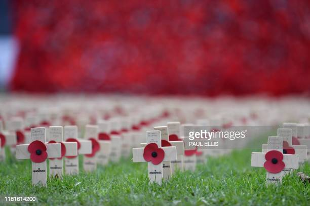 Picture shows remembrance poppies at a war memorial in Hartlepool, northeast England, on November 11 on Armistice Day, the anniversary of the end of...