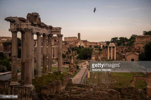 Picture shows the ancient Roman Forum ruins and the Colosseum during the sunset, on June 7, 2019 in Rome, Italy.