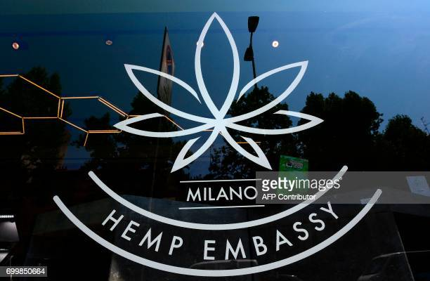 A picture shows the logo of the 'Hemp Embassy' store one of the first shop in Italy dedicated to cannabis on June 22 2017 in Milan Hemp is 'legal'...