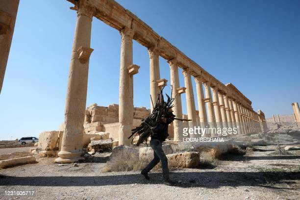 Picture shows the ruins of Syria's Roman-era ancient city of Palmyra on February 7 in the country's central province of Homs. - Syria has six sites...