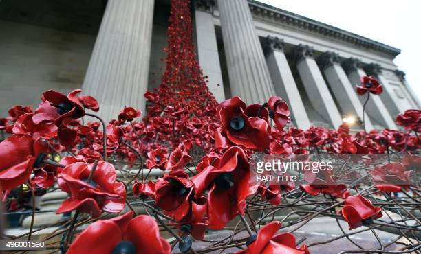 A picture shows the Weeping Window poppy installation by artist Paul Cummins and designer Tom Piper at St George's Hall in Liverpool north west...