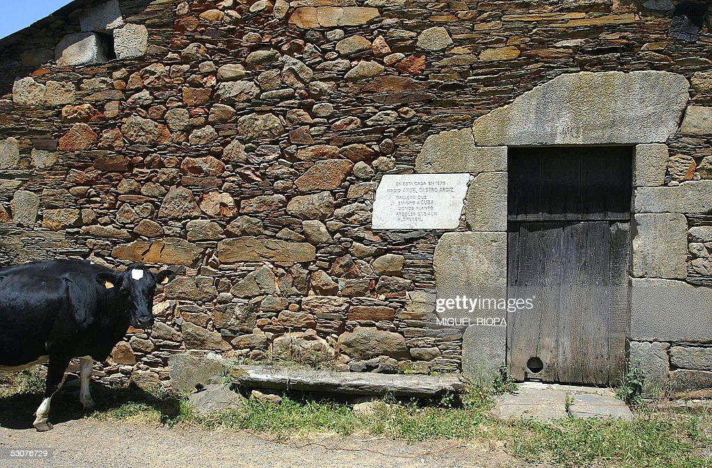 TO GO WITH AFP STORY 'GALICIAN HERITAGE : News Photo