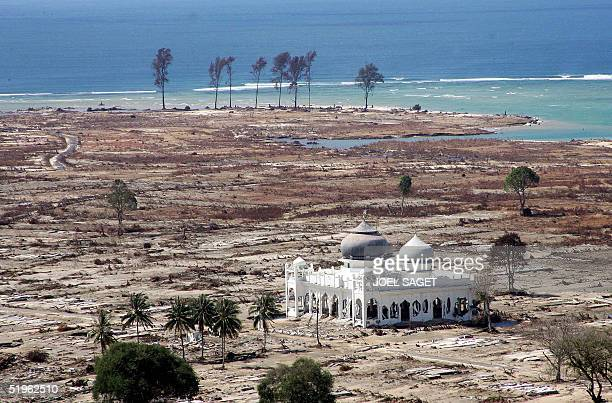A picture taken 14 January 2005 shows the mosque in the middle of the devastated town of Banda Aceh Indonesia said today it was seeking a lasting...