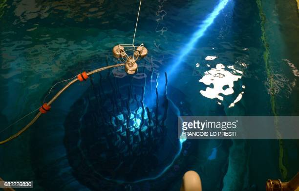 A picture taken at the nuclear power plant in Chooz northern France on May 10 2017 shows the vessel of the nuclear reactor in a pool The dismantling...
