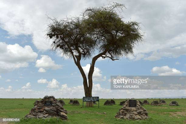 A picture taken at the olPejeta conservancy in Nanyuki north of capital Nairobi on March 20 2018 shows head stones that mark the graves where remains...