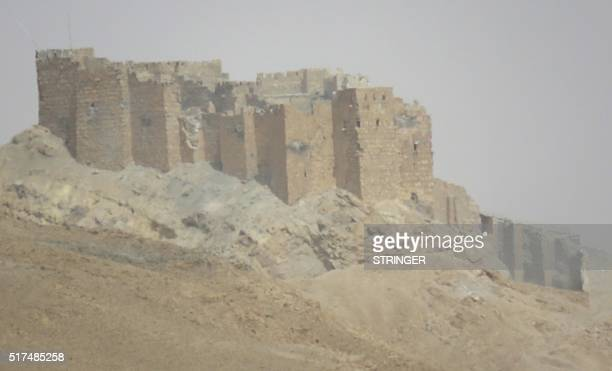 A picture taken from the outskirts of Palmyra on March 25 shows the citadel during a military operation by Syrian troops to retake the ancient city...