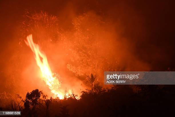 A picture taken in Kampar in Sumatra island's Riau province on September 16 2019 shows a fire in an agricultural land Indonesia has arrested nearly...