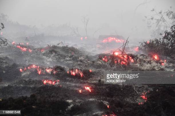 Picture taken in Kampar, in Sumatra island's Riau province on September 16, 2019 shows smouldering peatland following fire. - Indonesia has arrested...