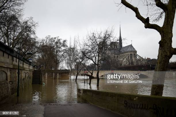 A picture taken in Paris on January 23 2018 shows the banks flooded as the river Seine level has risen following torrential rain with Cathedrale...