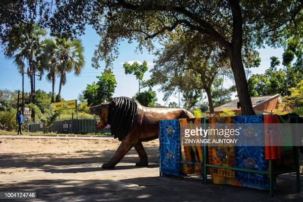 A picture taken on 28 June 2018 in the resort town of Victoria Falls shows a wooden sculpture of a lion named after 'Cecil the Lion' displayed at a...