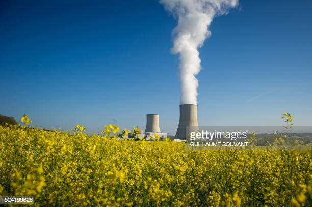 A picture taken on April 25 shows the two cooling towers of the nuclear power plant of Civaux seen behind a colza field in Civaux central France /...