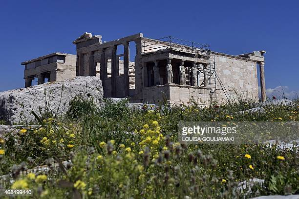 A picture taken on April 3 2015 shows the ancient Erechteion Temple with famous Kariatyds at Athens Acropolis during a warm spring day on April 3...