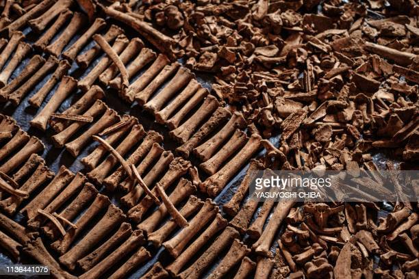 TOPSHOT A picture taken on April 9 shows victims' bones recovered from pits which were used as mass grave during 1994 Rwandan genocide and hidden...