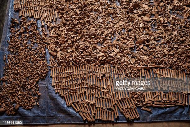 A picture taken on April 9 shows victims' bones recovered from pits which were used as mass grave during 1994 Rwandan genocide and hidden under...