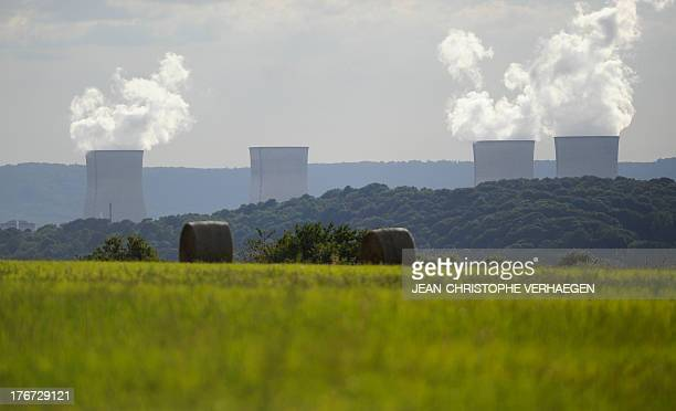 A picture taken on August 17 2013 shows the Cattenom nuclear power plant in Cattenom northeastern France AFP PHOTO / JEANCHRISTOPHE VERHAEGEN