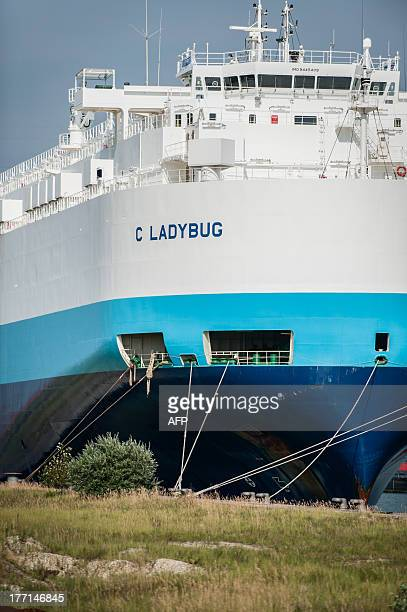 Picture taken on August 21, 2013 shows the bow of the Ladybug ship in Antwerp harbour. Eleven crew members of the Ladybug ship, all from China, are...