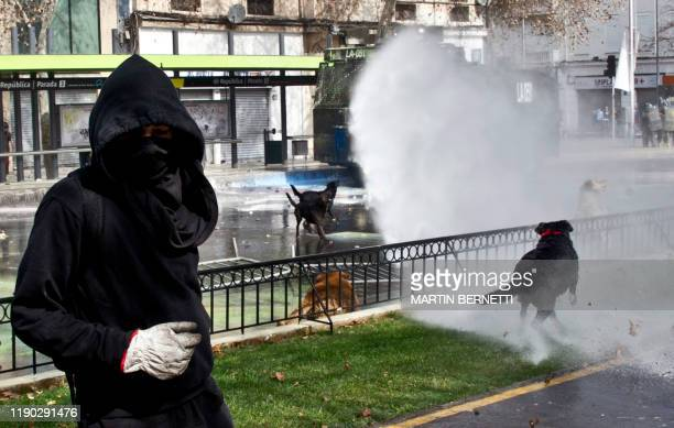Picture taken on August 21, 2014 of the so-called Negro Matapacos dog , during a students protest in Santiago. - The social movement that broke out...