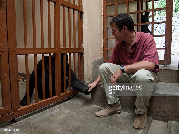 A picture taken on August 5 2012 shows an orphaned mountain gorilla tending his hand to the director of Virunga National Park Emmanuel De Merode in a...