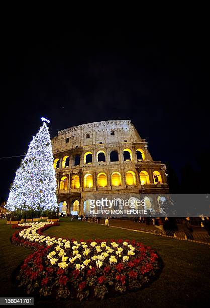 A picture taken on December 17 2011 shows a Christmas tree in front of the ancient Colosseum in Rome AFP PHOTO / FILIPPO MONTEFORTE