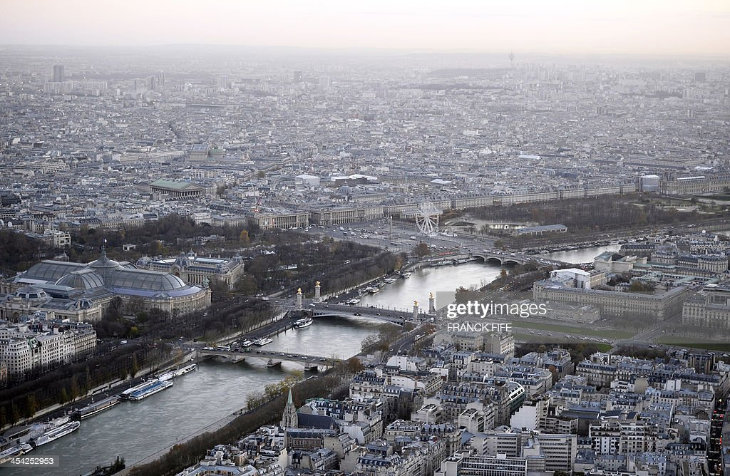 A picture taken on December 6, 2013 shows the river Seine, the Grand Palais (L), the Petit Palais (2ndL), the Alexandre III bridge (C) and buildings in Paris .