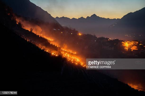 Picture taken on early April 8, 2021 shows burning candles placed close to the vines at a vineyard to keep the plants warm, part of the fight against...