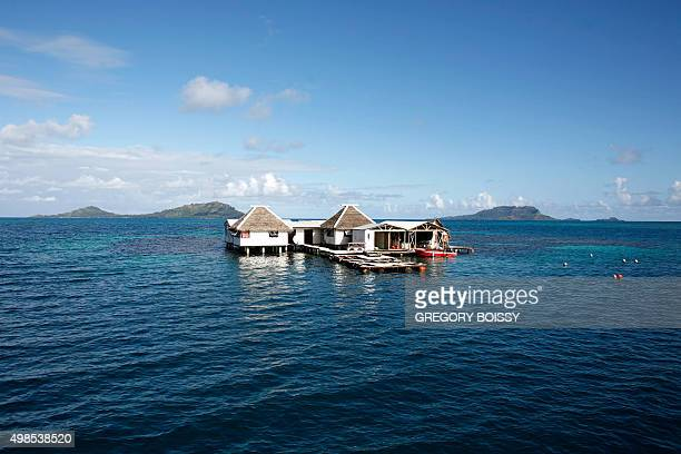 A picture taken on February 13 2010 shows a pearl farm in the Rikitea lagoon in the Gambiers archipelago French PolynesiaThe pearl pillar of the...