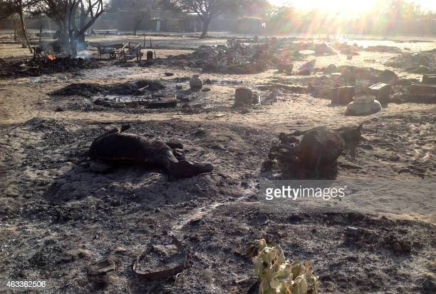A picture taken on February 13 2015 shows the village Nougboua after it was attacked by Nigeria's Boko Haram rebels Nigeria's Boko Haram rebels...