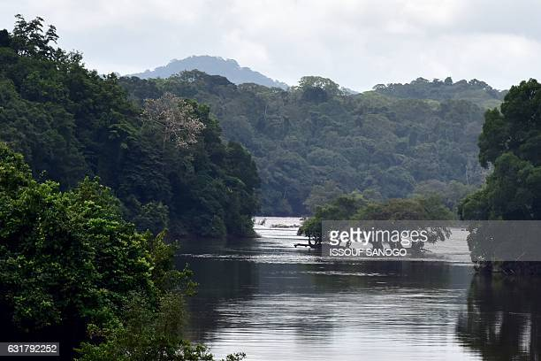 A picture taken on January 14 2017 shows the river Ogooe in the equatorial forest near Ndjole / AFP / ISSOUF SANOGO
